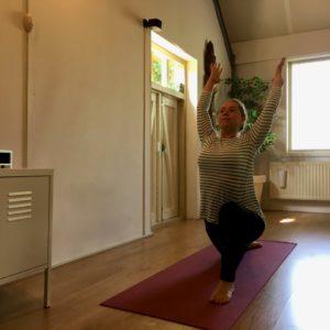 Yogaplaza Yogastudio Delfgauw - oefeningen die jij mee kunt doen